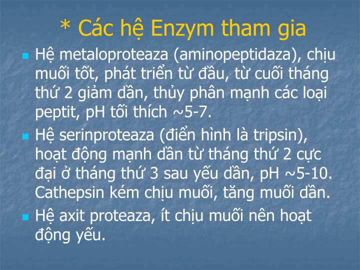 * Các hệ Enzym tham gia
