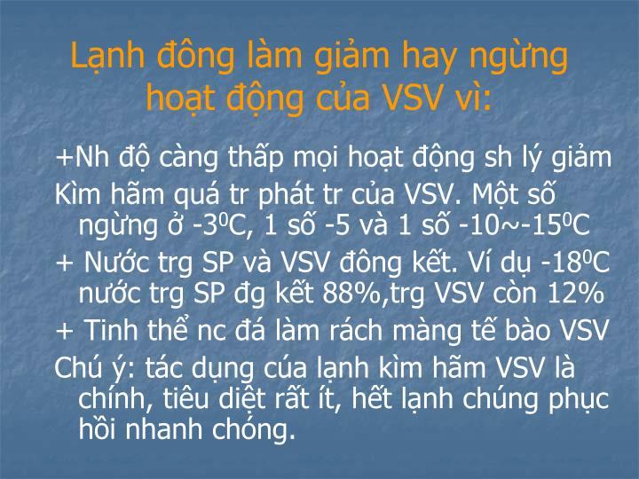 Lạnh đông làm giảm hay ngừng hoạt động của VSV vì: