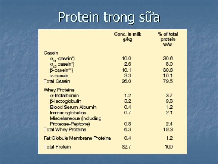 Protein trong sữa