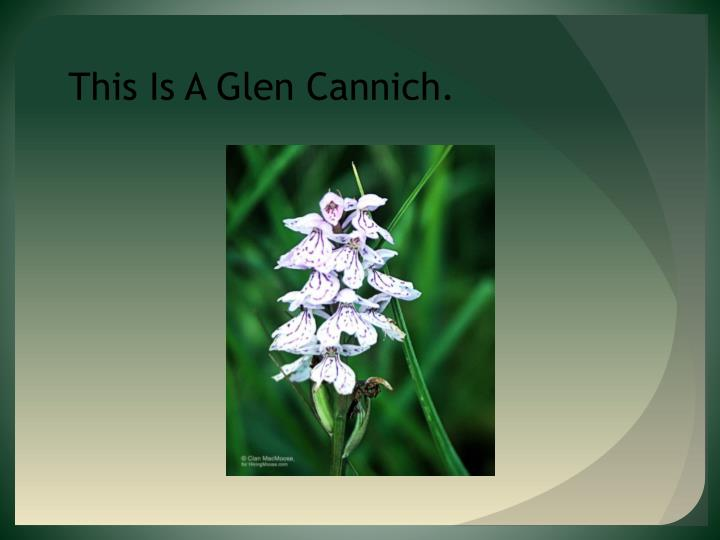 This Is A Glen Cannich.