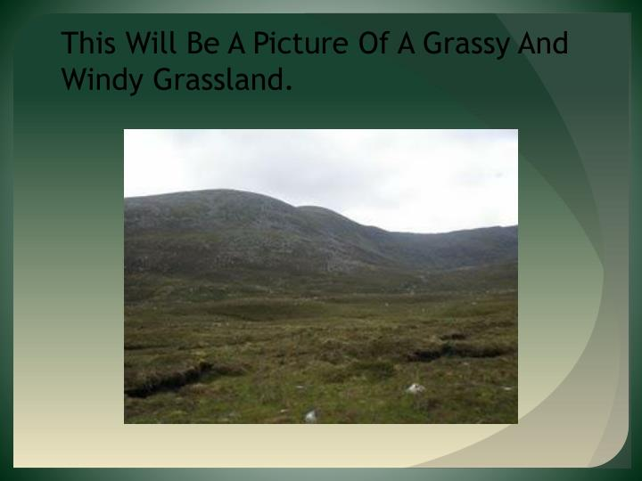 This Will Be A Picture Of A Grassy And Windy Grassland.