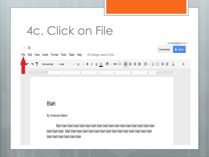 4c. Click on File
