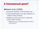 a homosexual gene