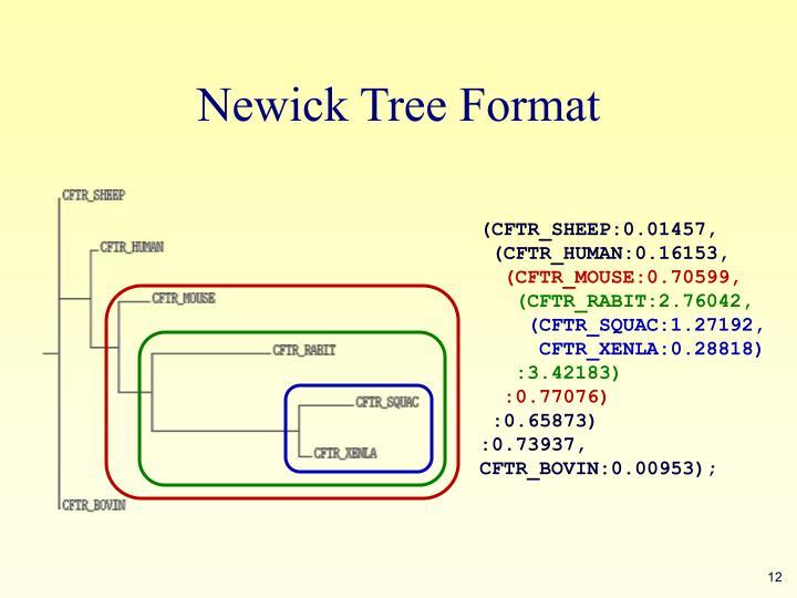 Newick Tree Format