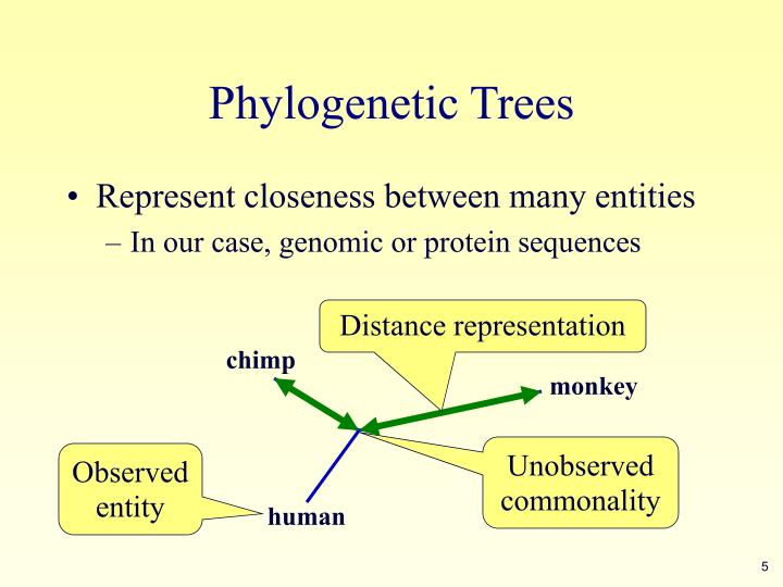 Distance representation
