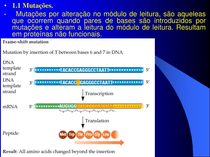 1.1 Mutações.