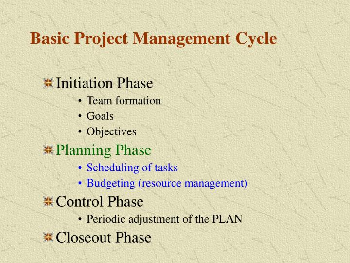 Basic project management cycle