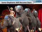 some elephants w ill become stars