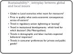 sustainability interplay between global and local issues