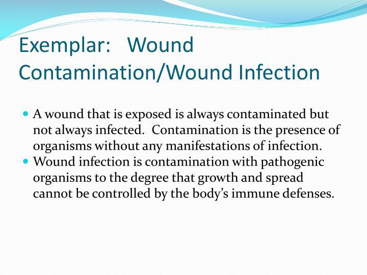 Exemplar:   Wound Contamination/Wound Infection