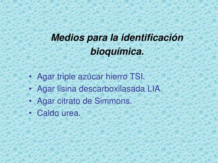 Medios para la identificación