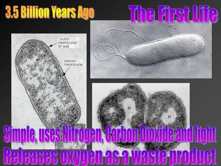 3.5 Billion Years Ago