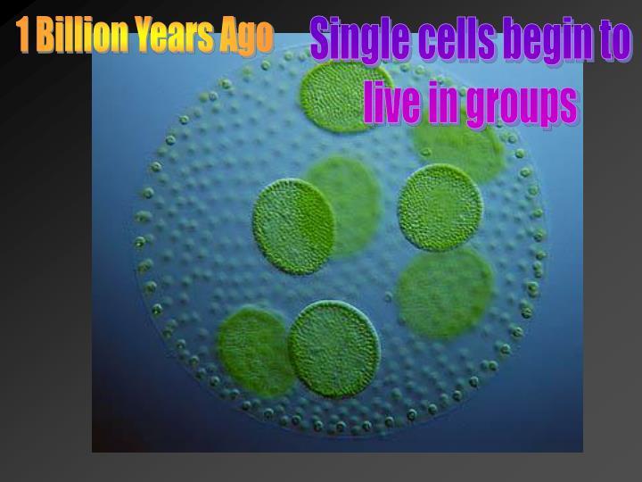 1 Billion Years Ago