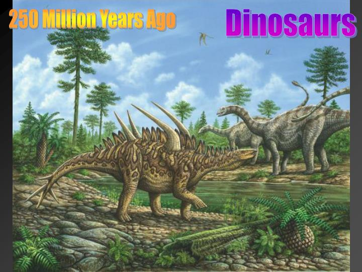 250 Million Years Ago
