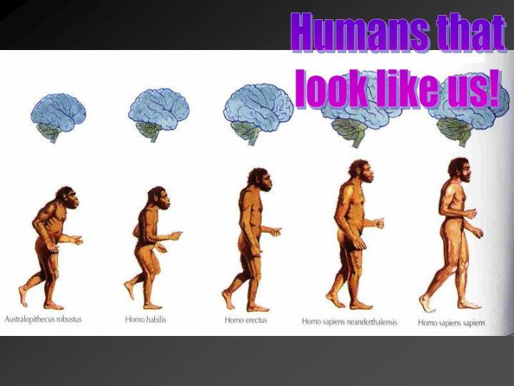 Humans that