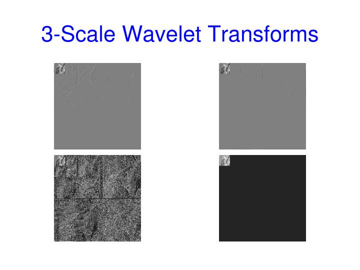 3-Scale Wavelet Transforms