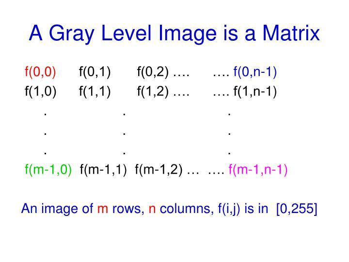 A Gray Level Image is a Matrix