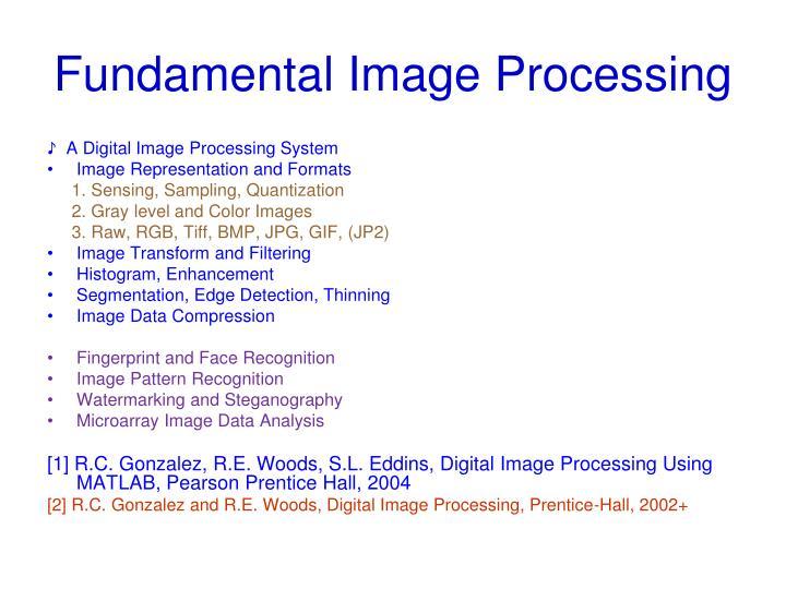 Fundamental Image Processing