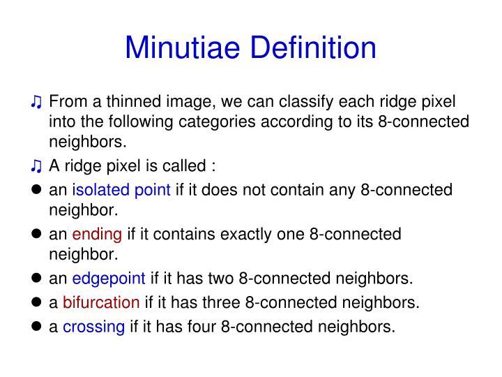 Minutiae Definition