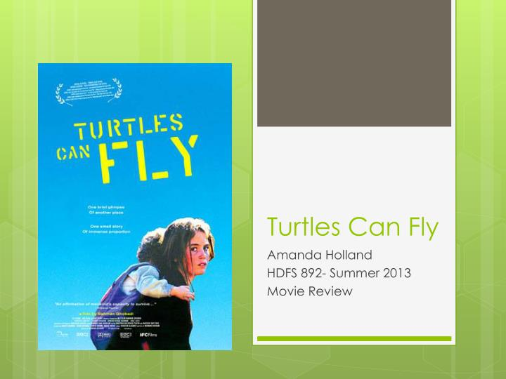 a review of the movie turtles can fly