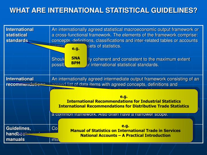 WHAT ARE INTERNATIONAL STATISTICAL GUIDELINES?
