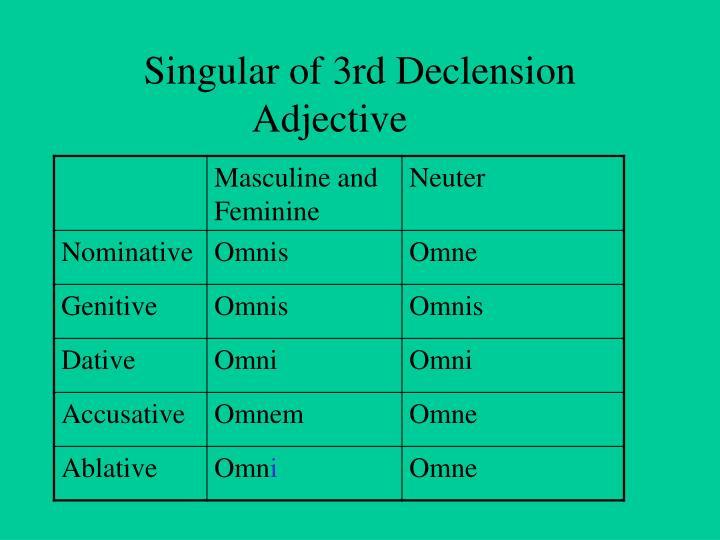 Singular of 3rd Declension Adjective