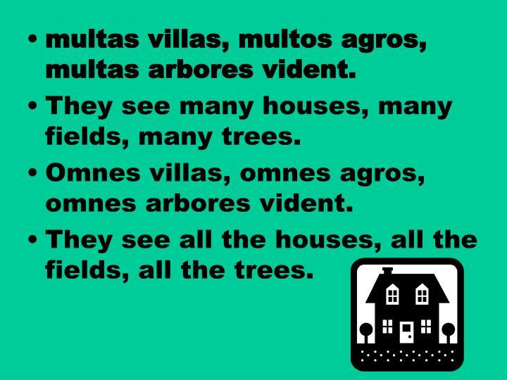 Multas villas, multos agros, multas arbores vident.