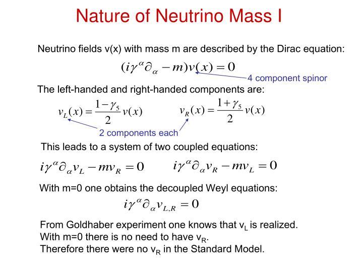 Nature of neutrino mass i