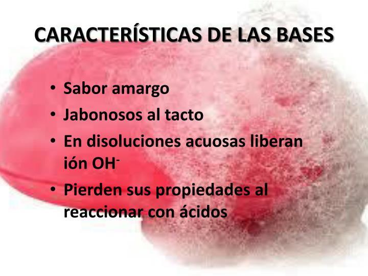 CARACTERÍSTICAS DE LAS BASES
