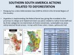 southern south america actions related to deforestation