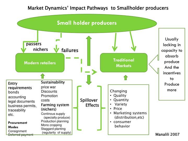 Market Dynamics' Impact Pathways  to Smallholder producers