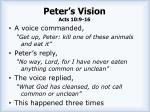 peter s vision acts 10 9 161