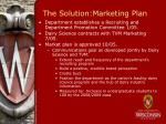 the solution marketing plan