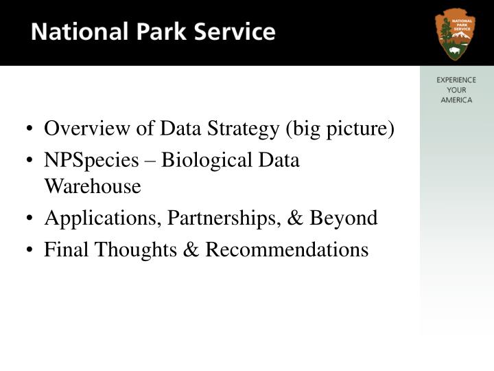 Overview of Data Strategy (big picture)