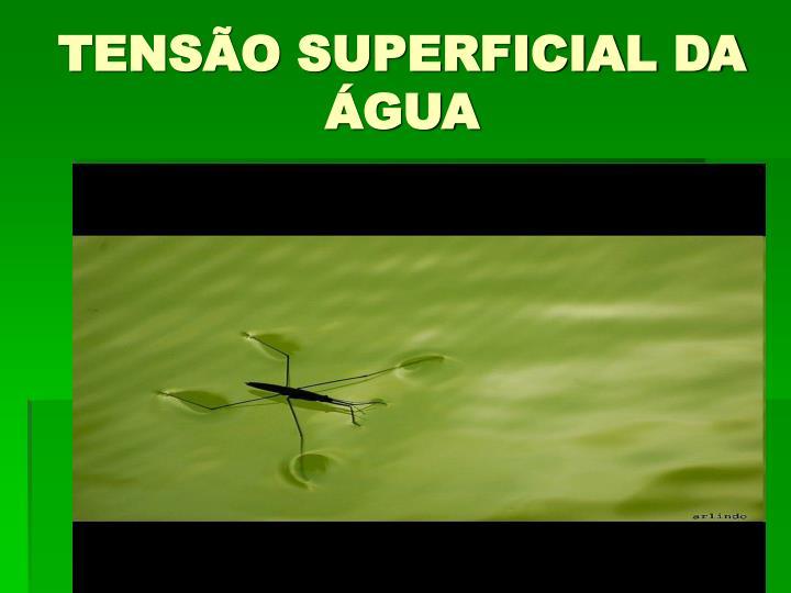 TENSÃO SUPERFICIAL DA ÁGUA
