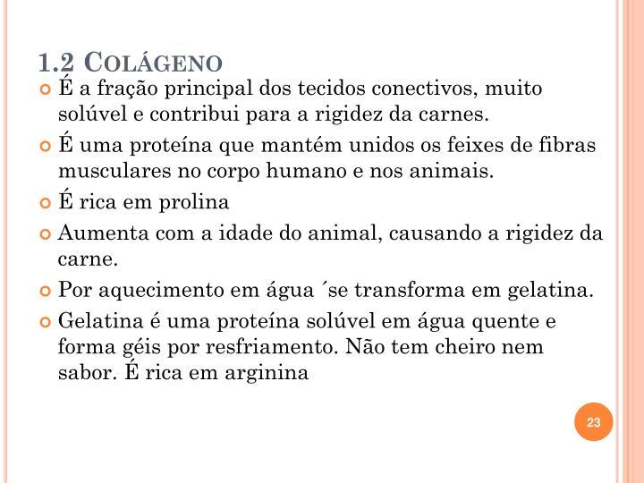 1.2 Colágeno