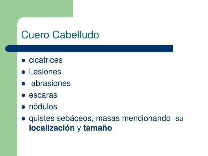 Cuero Cabelludo