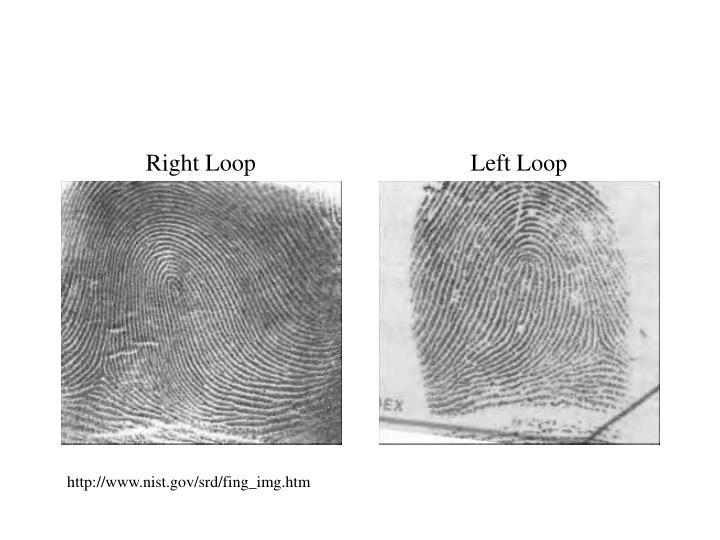 Right Loop