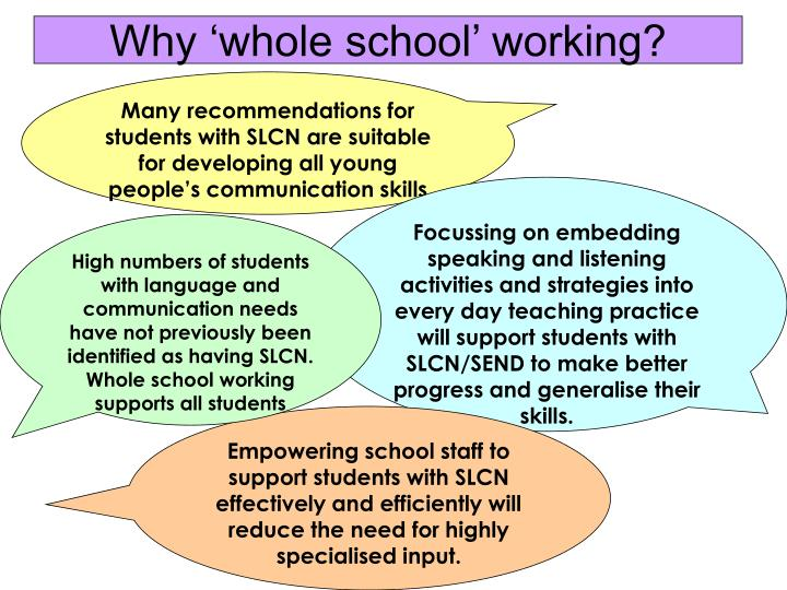 Why 'whole school' working?