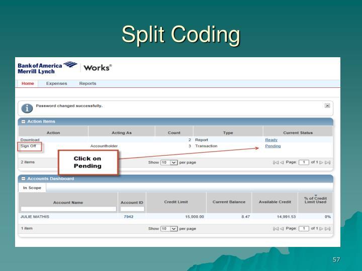 Split Coding