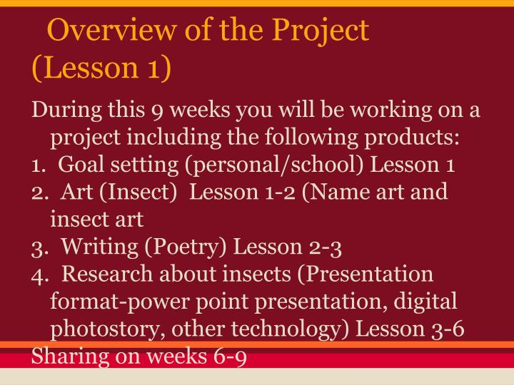 Overview of the project lesson 1