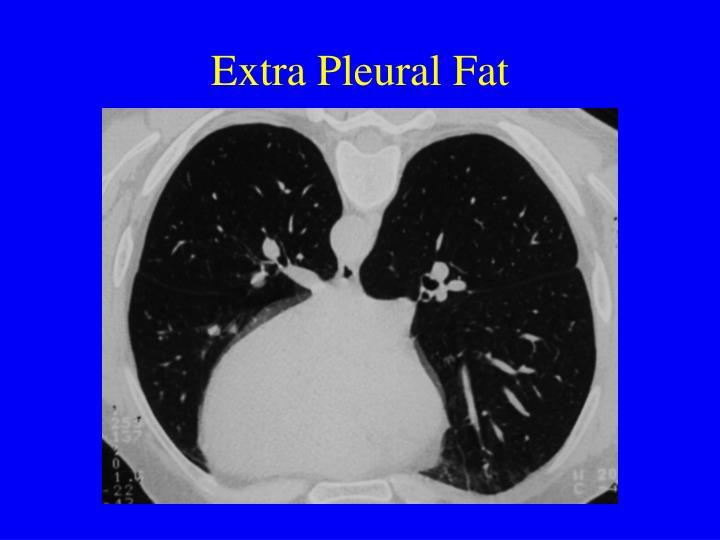 Extra Pleural Fat