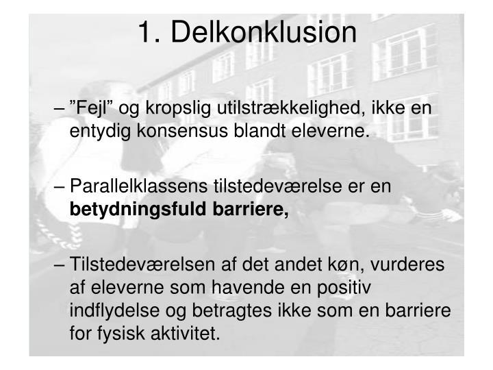 1. Delkonklusion