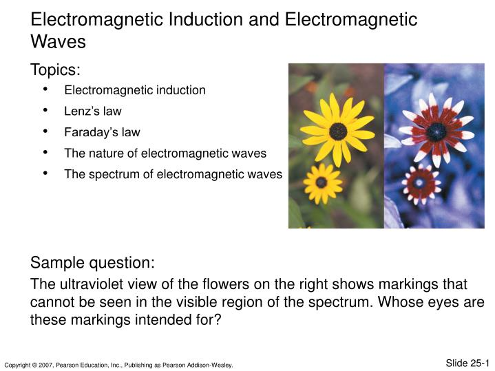 PPT - Electromagnetic induction Lenz's law Faraday's law The