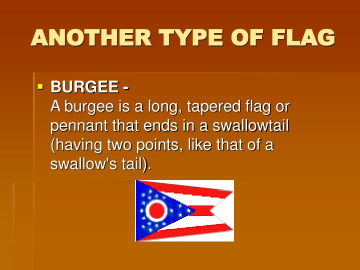 ANOTHER TYPE OF FLAG