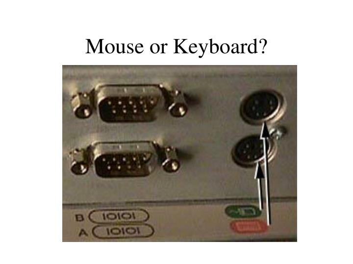 Mouse or Keyboard?