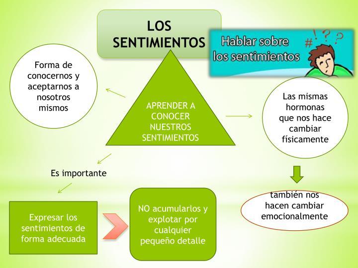 LOS SENTIMIENTOS