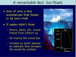 a remarkable fact ice floats