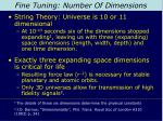 fine tuning number of dimensions