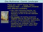one multiverse cosmic landscape